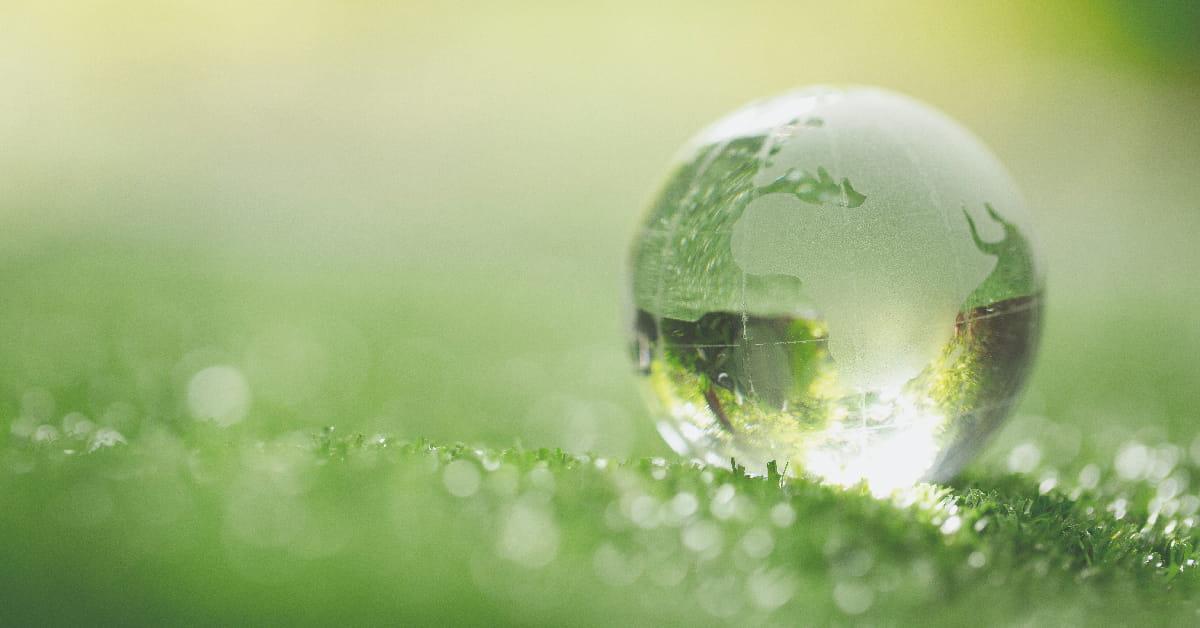 Norma ISO 14001 y Desempeño Ambiental