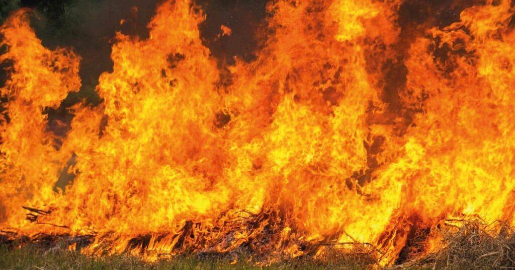 caracteristicas-de-los-incendios-forestales-de-sexta-generacion