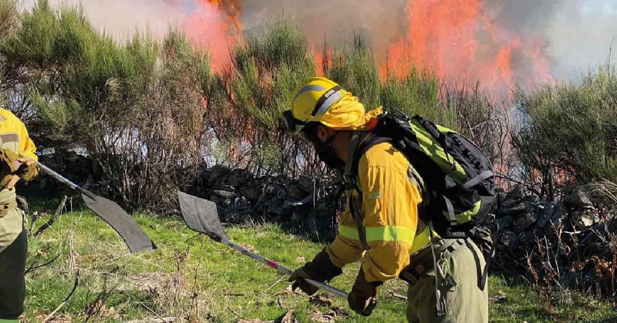 realidad incendios forestales
