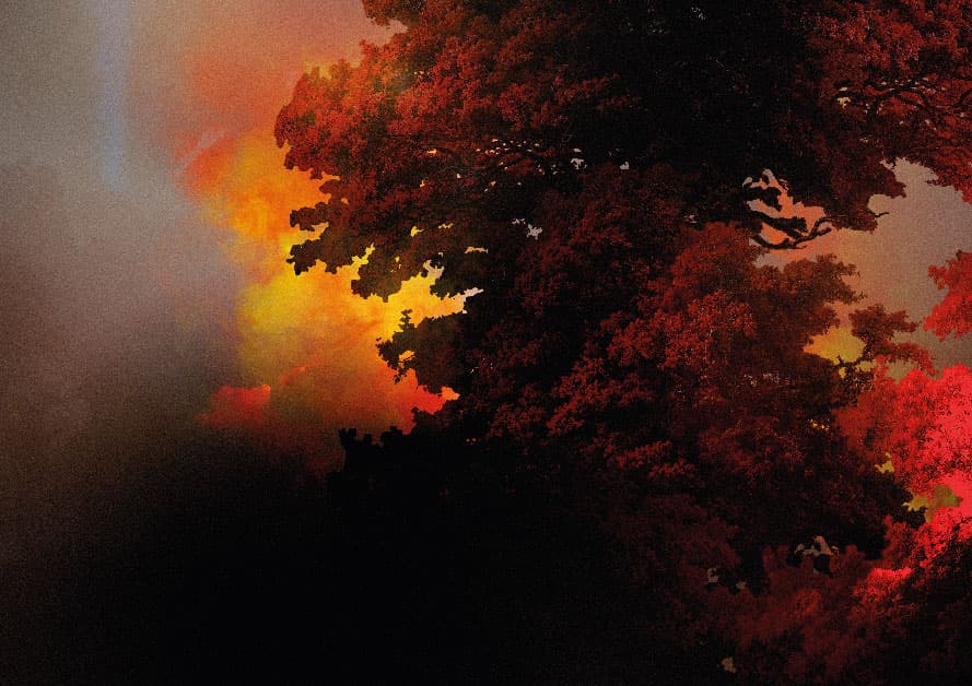 forest fires and meteorological phenomena